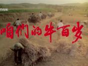 """《咱们的牛百岁》获评""""新中国成立70周年优秀电影剧本"""""""